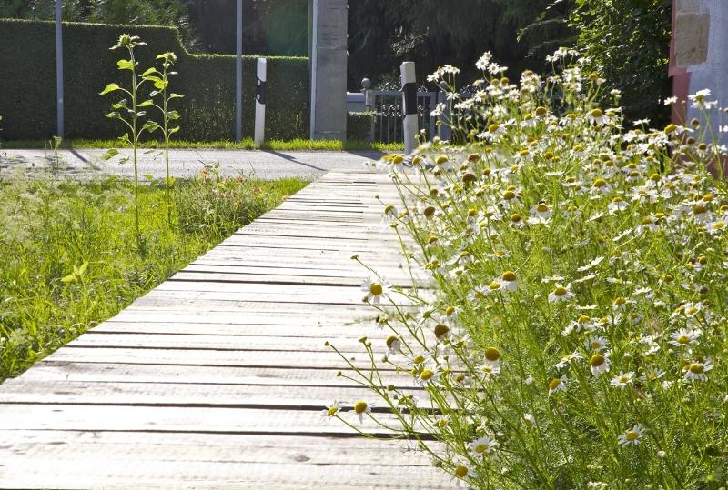 Der Lustweg im Sommer (2011) | Foto: Heike Sichting