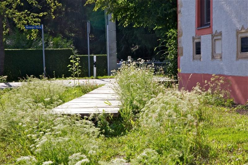 Der Lustweg im Frühling (2011) | Foto: Heike Sichting