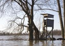 Hochwasser in Kleinliebenau 4 (2011) | Foto: Heike Sichting