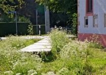 Der Lustweg im Frühling (2011)   Foto: Heike Sichting