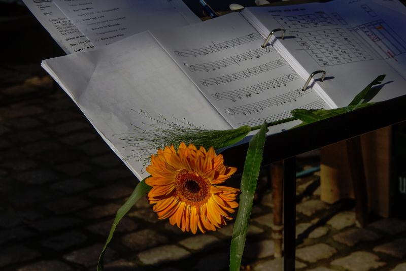 Sommerlieder I Foto: Holger Simmat