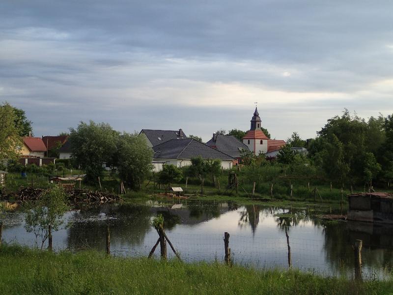 Hochwasser vor Kleinliebenau (Juni 2013) I Foto: Heike Sichting