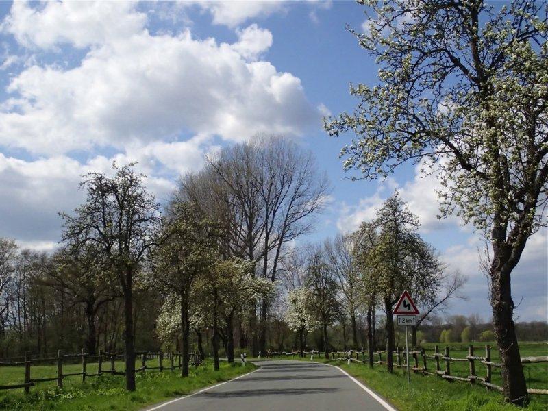 Frühling kurz vor Kleinliebenau (April 2016) | Foto: Heike Sichting