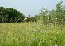 Kirchturm aus der Ferne (2008) | Foto: Heike Sichting