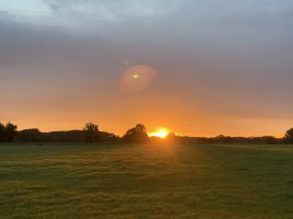 Sonnenaufgang in der Lieben Aue (Oktober 2021)   Foto: Heike Sichting
