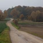 Auf dem Jakobsweg durch Sachsen mit Thomas Nitschke | Foto: Holger Simmat 03